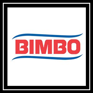 log_bimbo